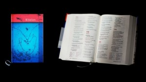 Norwegian-Bible-510x287